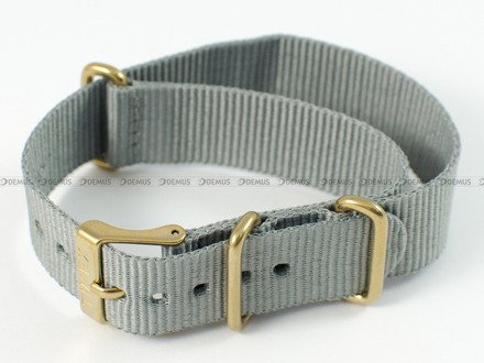 Pasek do zegarka Timex TW2P88500 - PW2P88500 - 18 mm